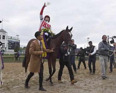 Newspaperofrecord Ire Horse Profile Bloodhorse