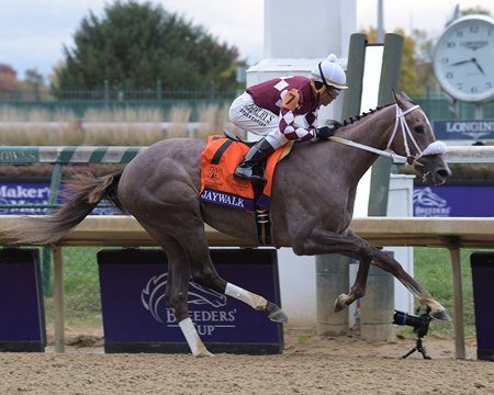 Jaywalk Dominates Breeders Cup Juvenile Fillies Bloodhorse