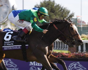 Sistercharlie Ire Horse Profile Bloodhorse