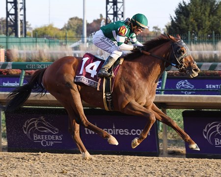 Accelerate Finds Top Gear To Win Breeders Cup Classic