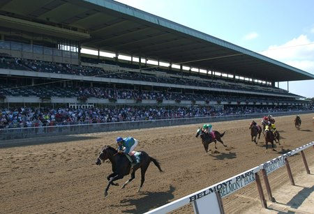 Racing at Belmont Park