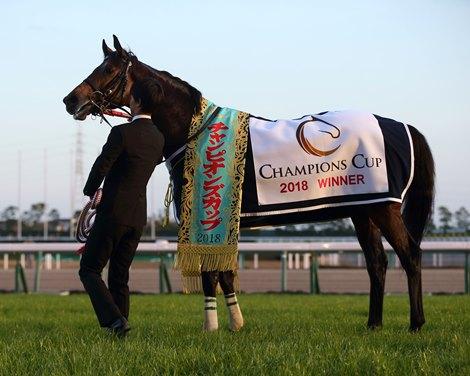 Le Vent Se Leve Wins Champions Cup Pavel Last Bloodhorse