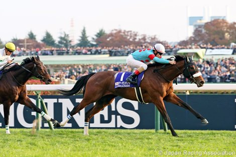 Filly Almond Eye to Prepare for Start in Dubai Turf
