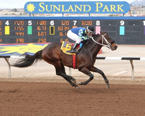 Runaway Ghost Returns A Winner In Ft Bliss Stakes