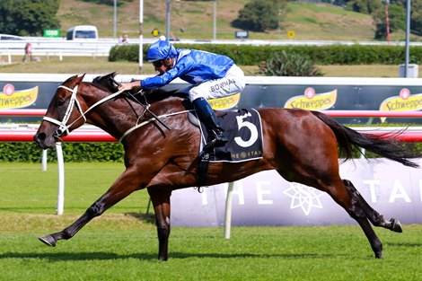 Winx Gives Another Effortless Victory in Apollo Stakes