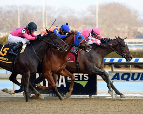 Former Claimer Tax Takes Withers Stakes Bloodhorse