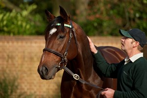 Rob Bowley with Frankel at Banstead Manor Stud