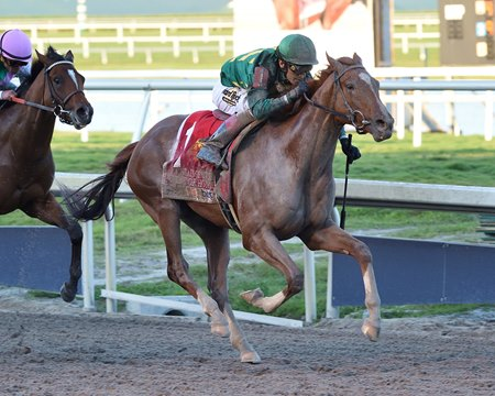 Code of Honor Breaks Through in Fountain of Youth - BloodHorse
