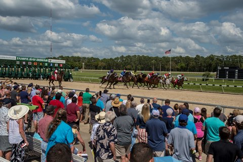 Carothers to Handicap Tampa Bay Downs Races