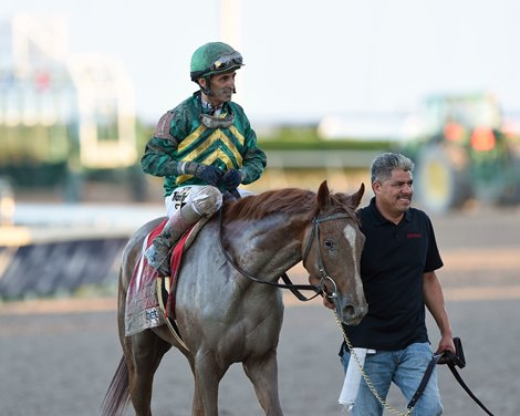 Code Of Honor Breezes For Florida Derby Bloodhorse