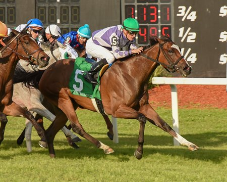 Concrete Rose wins the Florida Oaks at Tampa Bay Downs