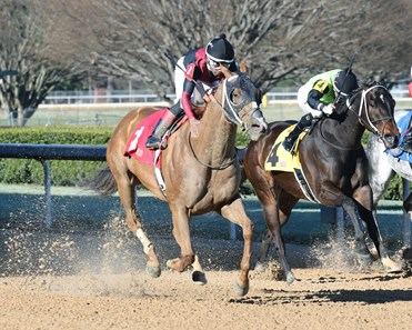 Whitmore wins the 2019 Hot Springs Stakes
