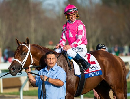 Meet the Jockeys of the 2019 Preakness Stakes - BloodHorse