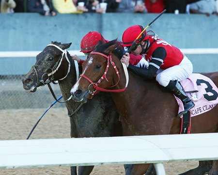 Midnight Bisou (outside) edges Escape Clause by a nose to win the Apple Blossom Handicap at Oaklawn Park
