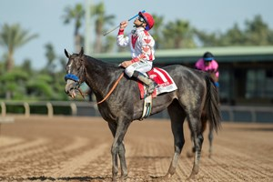 Tacitus Proves His Mettle In Wood Memorial Bloodhorse