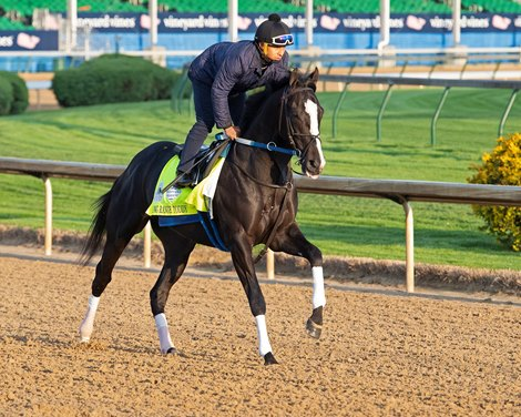 Long Range Toddy All Systems Go For Kentucky Derby
