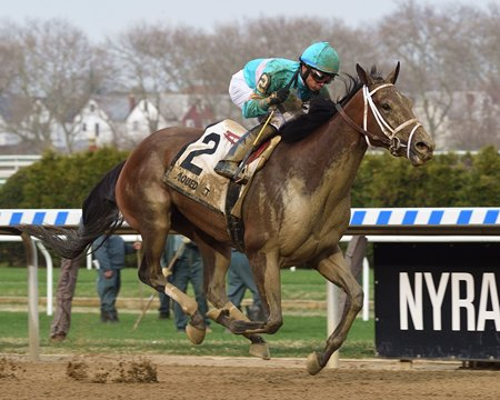 Another Broad wins the Top Flight Invitational Stakes at Aqueduct Racetrack