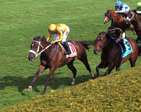 Imprimis Gets Chance to Shine in Keeneland's Woodford