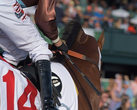 Laurel Park Riders to Use New Cushioned Riding Crops