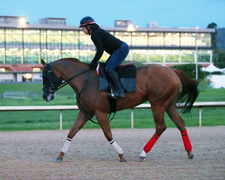 Whitmore jogs on the main track at Oaklawn Park