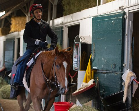 Code of Honor Arrives at Churchill for Kentucky Derby
