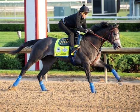 Roadster Drives Speedway Stable To Kentucky Derby Bloodhorse