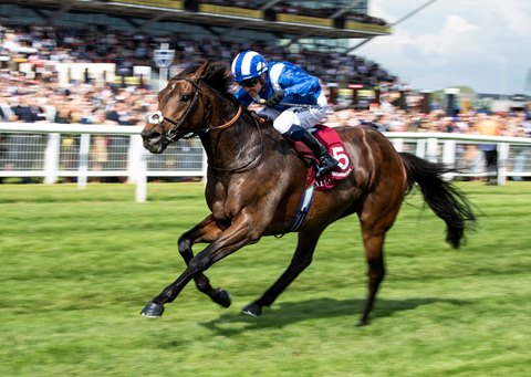 Mustashry Victorious in Lockinge Stakes for Stoute