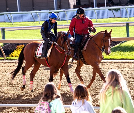 Preakness Contenders Warm Up At Pimlico Bloodhorse