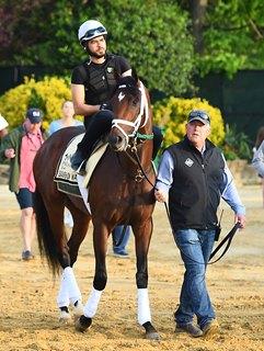Trainer Mark Hennig Aims Bourbon War at Belmont Stakes
