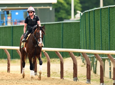 Jim Dandy Decision Awaits War Of Will At Saratoga Bloodhorse