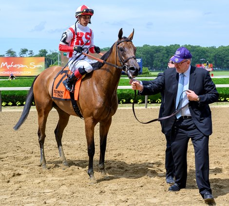 Separationofpowers Puts Away Bed o' Roses Rivals