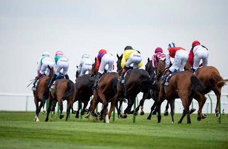 Horse racing betting legal syndicate regulation time betting odds