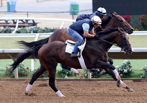 Omaha Beach Returns to Work Tab at Del Mar