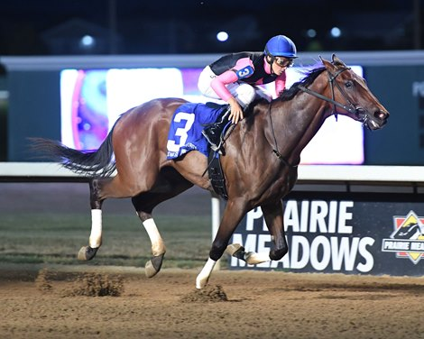 Southgate First Winner For Oklahoma Stallion Dramedy