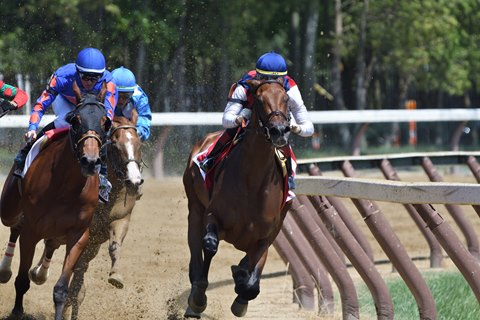 Breeders' Cup Distaff Berth at Stake in Cotillion