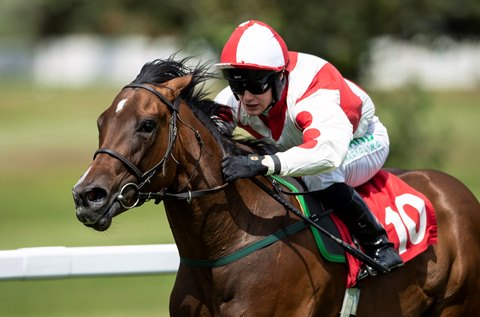 Highclere Stud's Cable Bay Gets First Stakes Winner