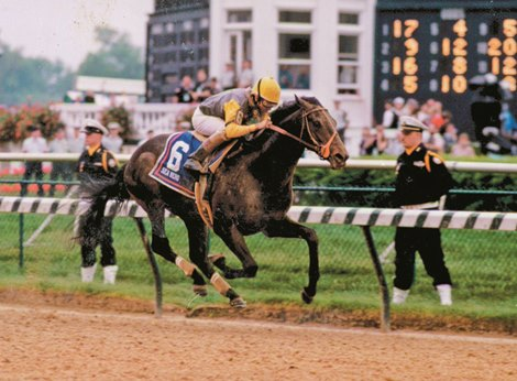 Oldest Living Derby Winner Sea Hero Dies at 29