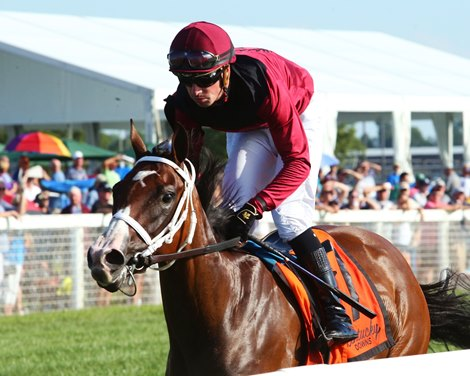Jezebel S Kitten Tops Full Field In Jessamine Stakes