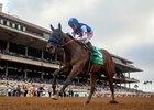 Uncle Mo Horse Profile Bloodhorse