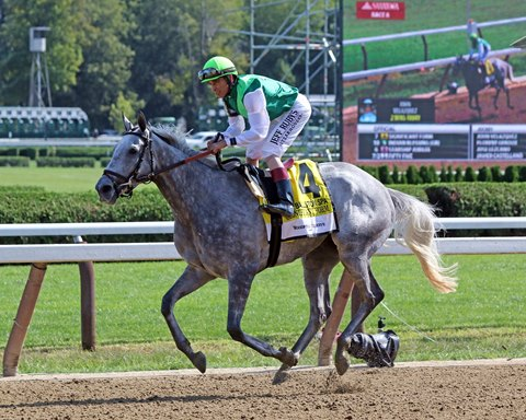 Significant Form Back at Belmont for Noble Damsel
