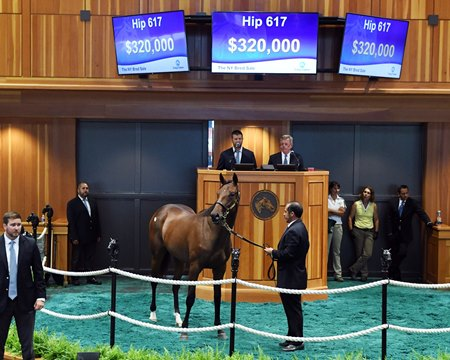 Farmer Acquires Twirling Candy Filly for $320,000 - BloodHorse