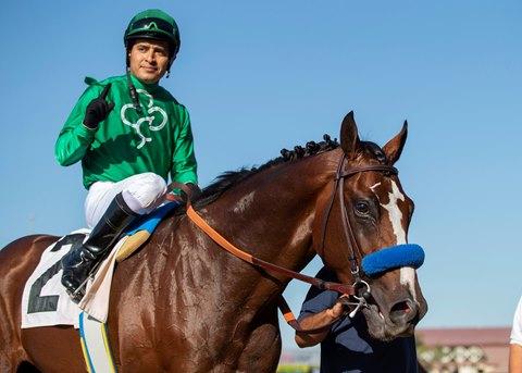 Kingly Makes the Grade in Del Mar's La Jolla
