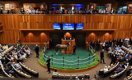 $850,000 Frosted Filly Shines for First-Crop Sire - BloodHorse