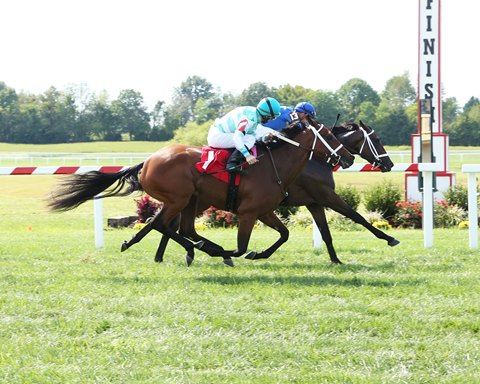 Maiden Races Highlight Old Friends Day at KY Downs