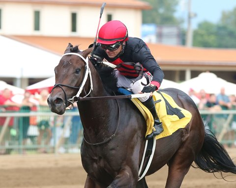 Rowdy Yates to Try Graded Stakes Again in Iroquois