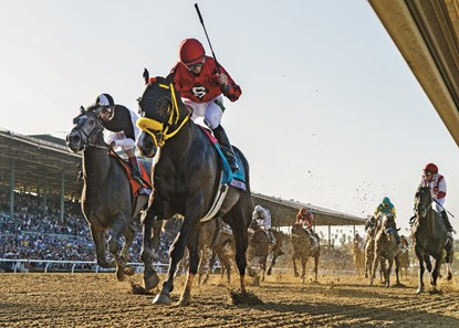 Trinniberg wins the 2012 Breeders' Cup Sprint