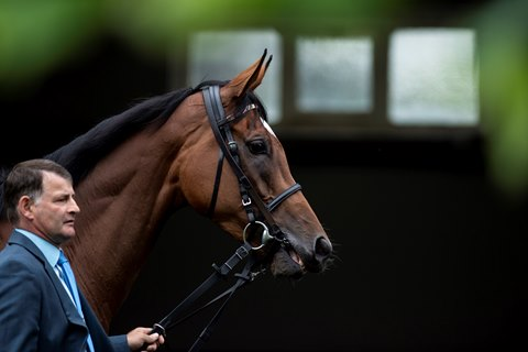 Enable Takes on Three to Defend Title in Yorkshire Oaks