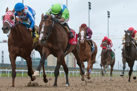 Woodbine to Try New Rules on Riding Crop Use