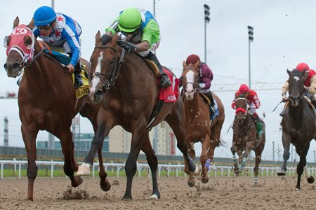 Horses race through the stretch at at Woodbine