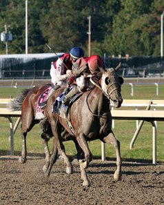 Street Band wins the Cotillion Stakes at Parx Racing